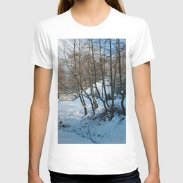 Winter is here ! T-shirt
