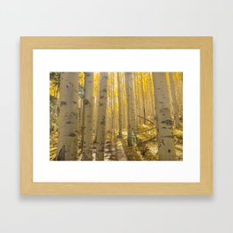 Good Vibes in The Forest Framed Art Print