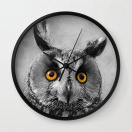 Birds Of Prey. Long Eared Owl 2 Wall Clock
