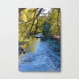Autumn collection 3 Metal Print
