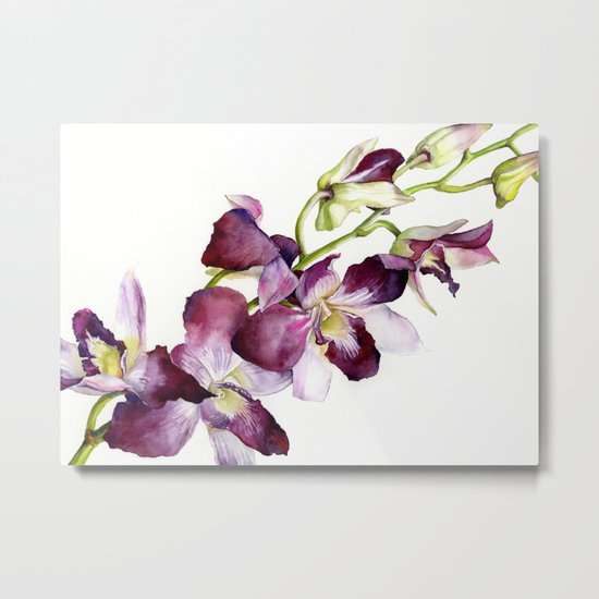 Radiant Orchids: Magenta Dendrobiums Metal Print