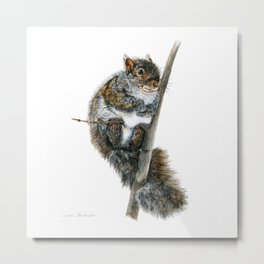 Twinkle Toes by Teresa Thompson Metal Print