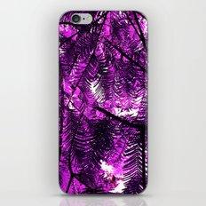 purple fir tree iPhone & iPod Skin
