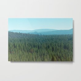 rolling pines Metal Print