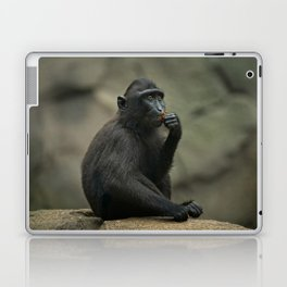 Celebes Crested Macaque Youngster Laptop & iPad Skin