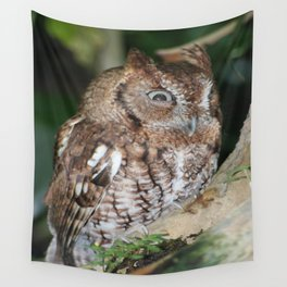 Eastern Screech Owl Wall Tapestry