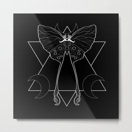 Silk Moth Metal Print