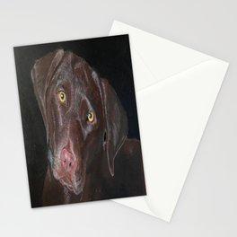 Inquisitive Chocolate Labrador Stationery Cards
