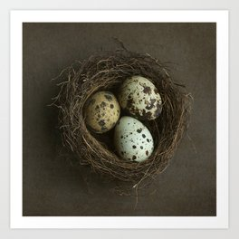 Speckled Eggs and Nest Art Print