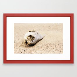 fish carcass Framed Art Print