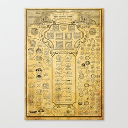 DEATH CHART Canvas Print