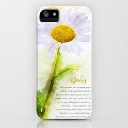 Daisy iPhone Case