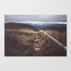 Restless Wanderer Canvas Print