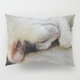 Cute Kitty Snoozes Softly Pillow Sham