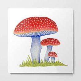 Woodland Toadstools Metal Print