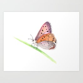 Pink Butterfly Art, Butterfly on a Branch, Watercolor Painting, Birds and Berry Art Print
