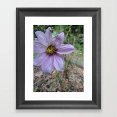 Light Purple Flower Framed Art Print