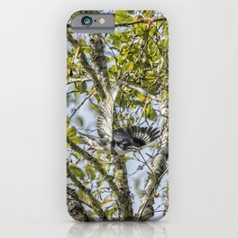 Belted Kingfisher in Flight, No. 1 iPhone Case