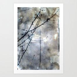 Cloudy Botanical Art Print