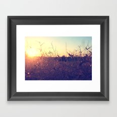 Evening in Summer Framed Art Print