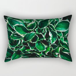 Hosta undulata albomarginata vibrant green plant leaves Rectangular Pillow