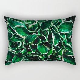 Hosta undulata albomarginata vibrant green plant leaves Rectangular Pillow