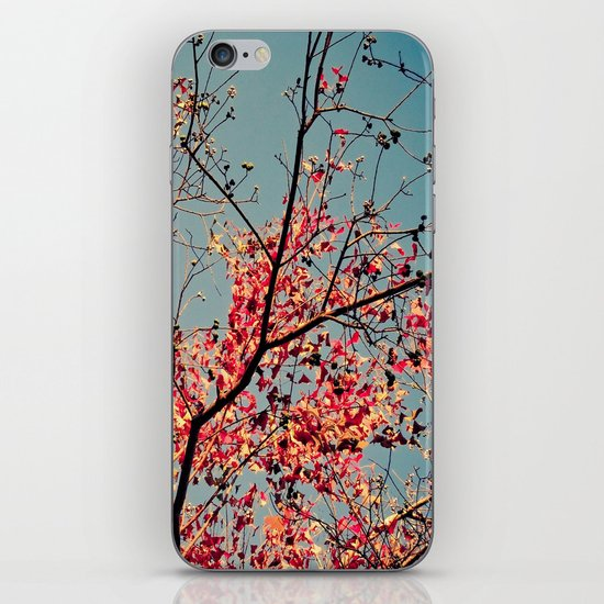 Autumn Branch & Leaves iPhone Skin