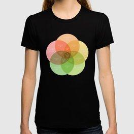 Ice Cube - It Was A Good Day Venn Diagram T-shirt