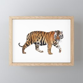 BENGAL TIGER Framed Mini Art Print