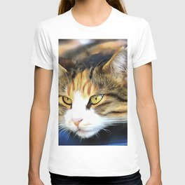 Contented Cat T-shirt