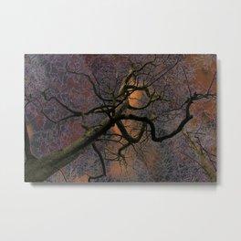 Crazy tree Metal Print