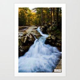 Franconia Flow Art Print
