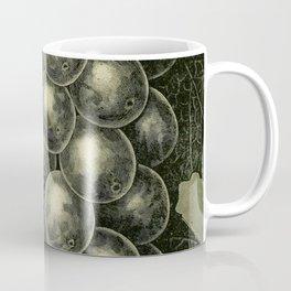 OUR NATIVE GRAPE. THE GENEVA 1893 Coffee Mug