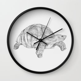 Tortoise Wall Clock