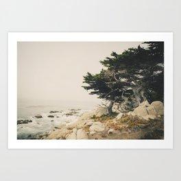 Carmel by the Sea Kunstdrucke