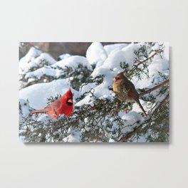 Snow for Breakfast (Cardinals) Metal Print