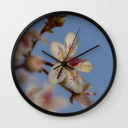 London Pride Flower Wall Clock
