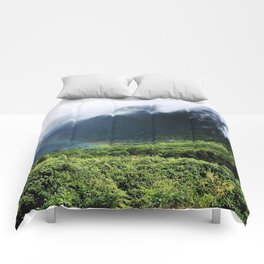 New Zealand's beauty *Fox Glacier's Tropical Forest Comforters