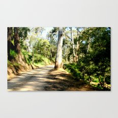 Along a forest Road Canvas Print