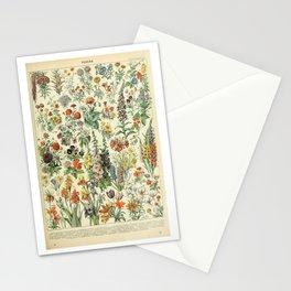 Adolphe Millot Vintage Fleurs Flower 1909 Stationery Cards