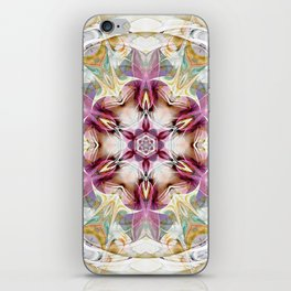 Mandalas from the Heart of Change 7 iPhone Skin