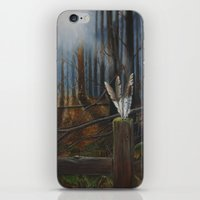 kentucky iPhone & iPod Skins featuring Kentucky Feathers by JacquelinePatrice