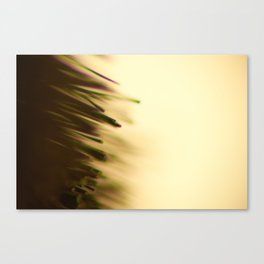 Tips Canvas Print