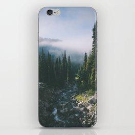 Washington III iPhone Skin