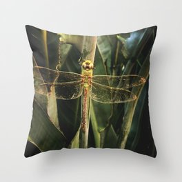 Dragon Fly Discoveries Throw Pillow