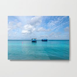 Dhonis Day Off Metal Print