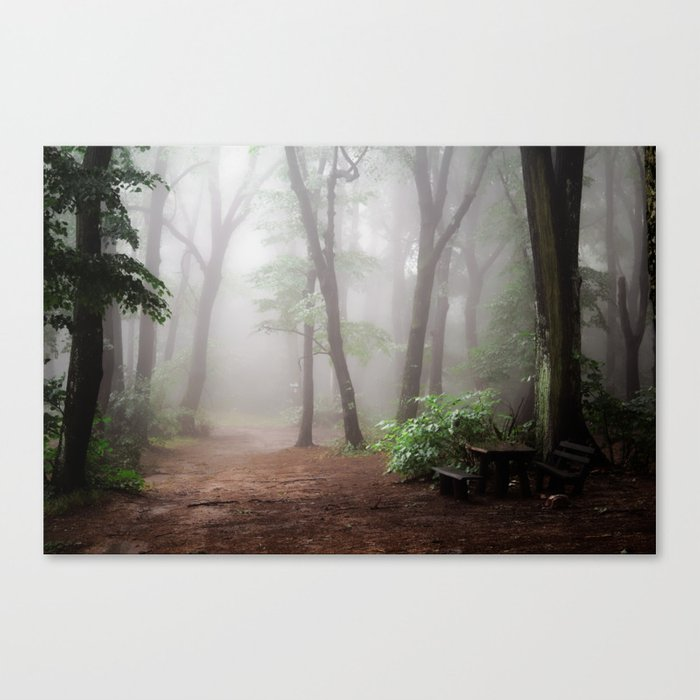 Misty Woods #adventure #photography Canvas Print
