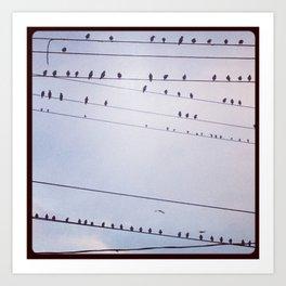 The birds wait Art Print