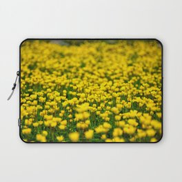 Small yellow wild flowers in the green field Laptop Sleeve