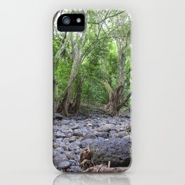 river lava rock iPhone Case